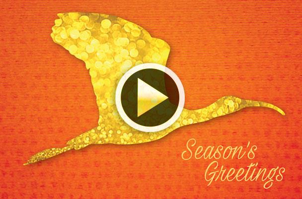 Season Greetings Video